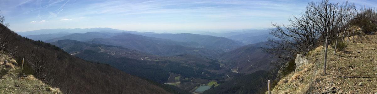 panoramica massicaia