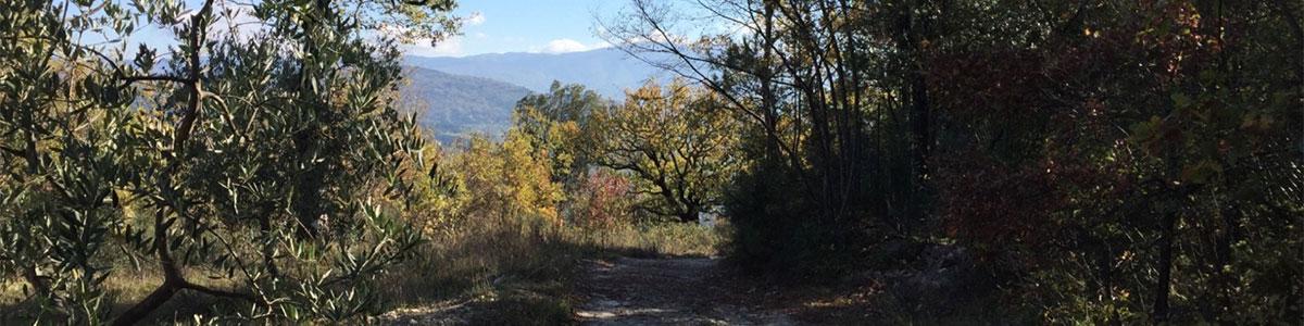 Girone - Citerno - Monteloro - Sieci - Girone