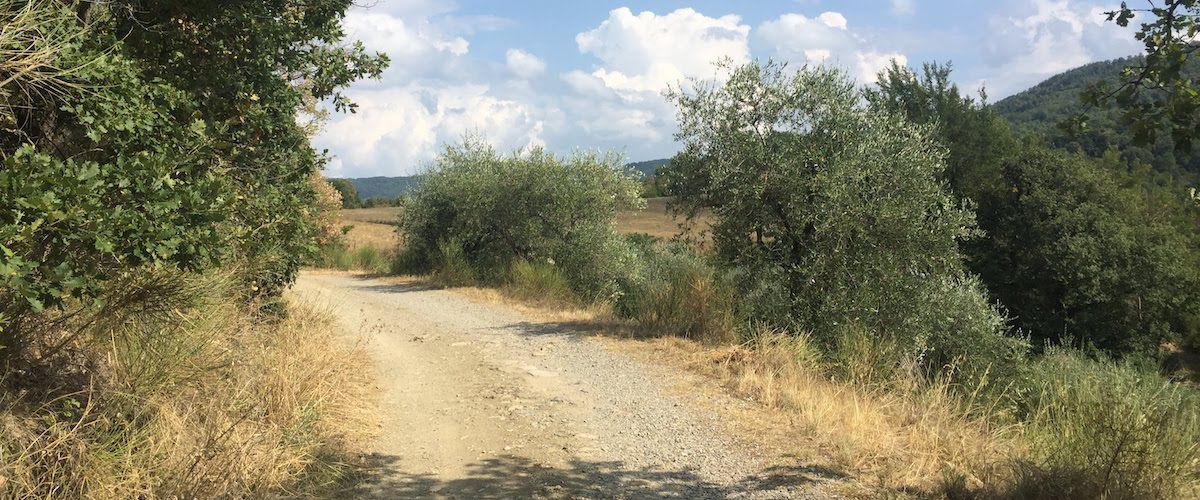 strada gravel verso Falgano