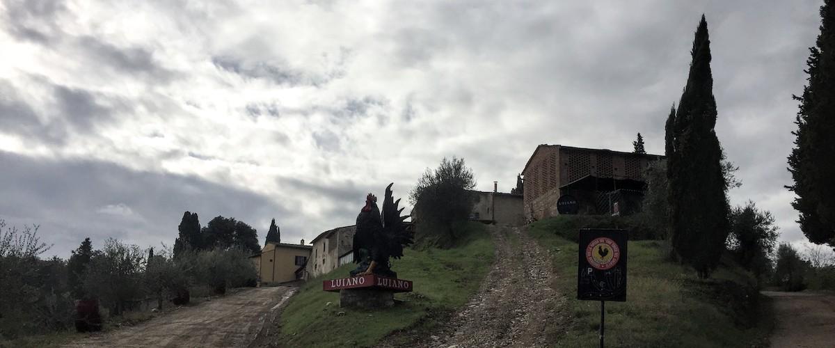 Fattoria di Luiano - Chianti Gallo Nero